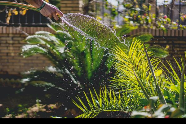 GMB London slam Water UK warning about gardeners using water after wettest Autumn/Winter in living memory